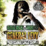 general levy Reverse Sound Cafè