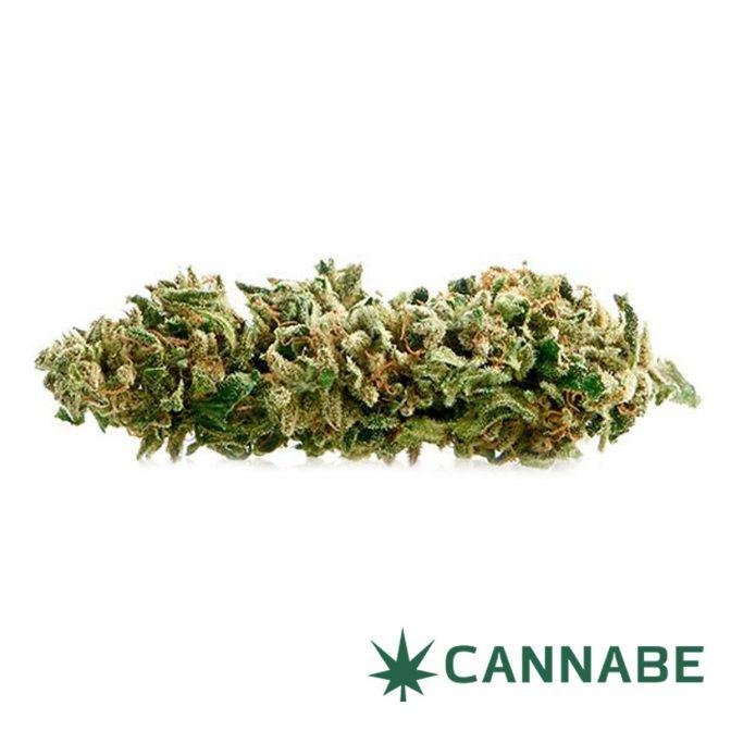 cannabe marijuana light
