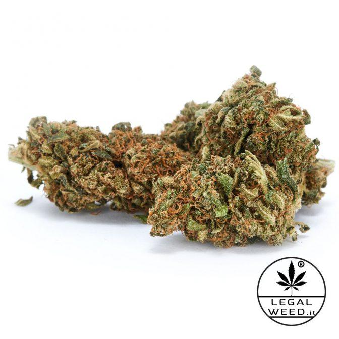 legal weed marijuana light