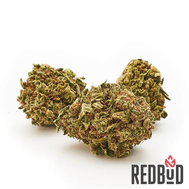 prezzi cannabis online
