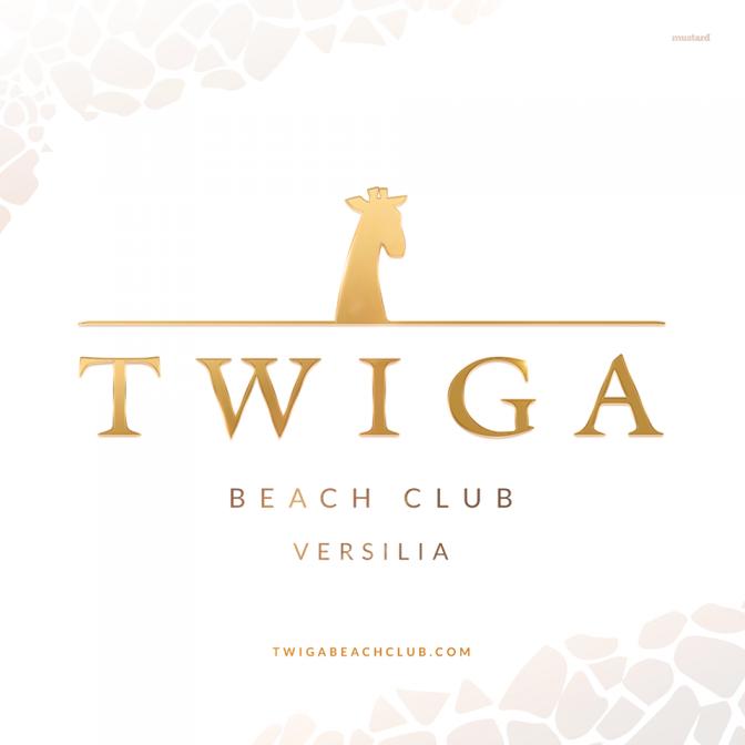 discoteche versilia twiga